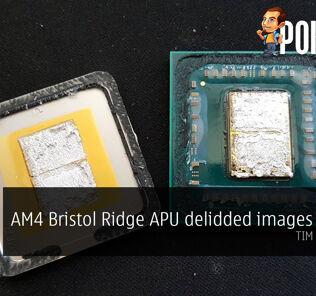 AM4 Bristol Ridge APU delidded images appear — TIM looks good 24