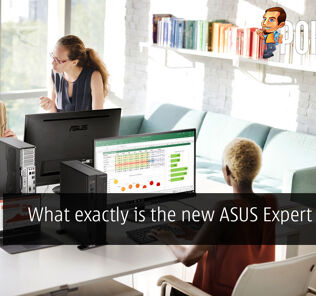 What exactly is the new ASUS Expert Series? 24