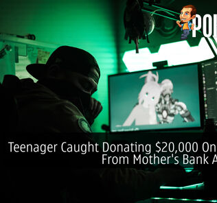 Teenager Caught Donating $20,000 On Twitch From Mother's Bank Account 21