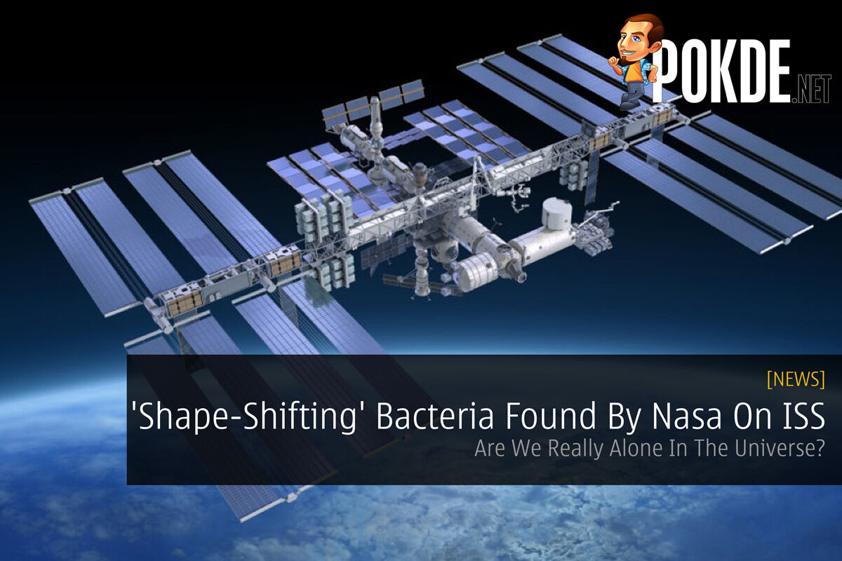 'Shape-Shifting' Bacteria Found By Nasa On ISS - Are We Really Alone In The Universe? 27