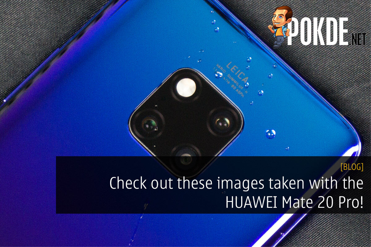 Check out these images taken with the HUAWEI Mate 20 Pro! 24