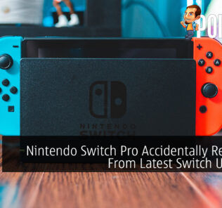 Nintendo Switch Pro Accidentally Revealed From Latest Switch Update? 19