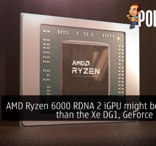 AMD Ryzen 6000 RDNA 2 iGPU might be faster than the Xe DG1, GeForce MX350 21